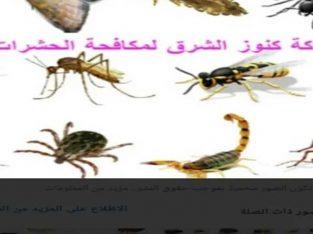 شركة مكافحة الحشرات الصراصير والنمل