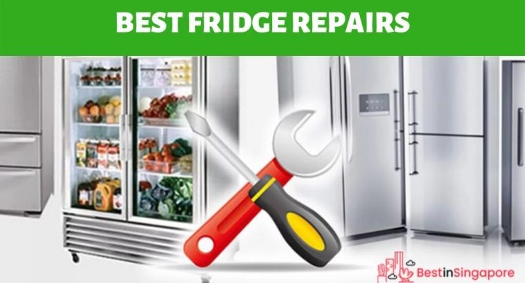 ANY FRIDGE FREZZAR REPAIR